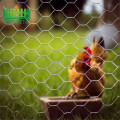 chicken+wire+mesh+fence+of+PVC+coated