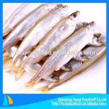 all types of frozen seafood cheap pond smelt supplier
