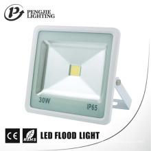 Lampes d'inondation résistantes à la corrosion 30W LED de logement en aluminium de moulage en matrice