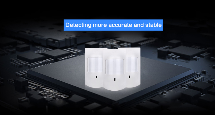 Long Distance Motion Detector