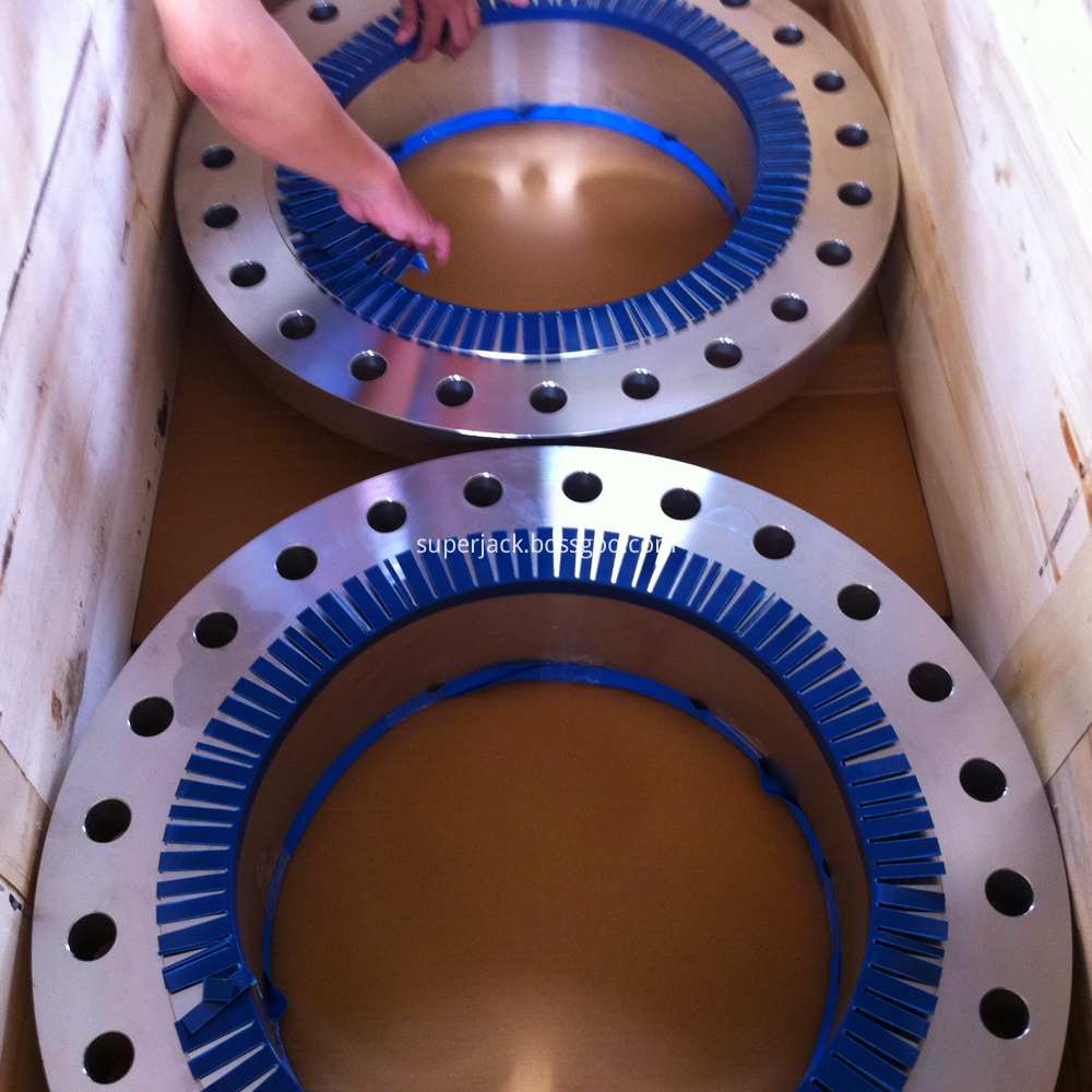 Stainless Steel Flange Wn