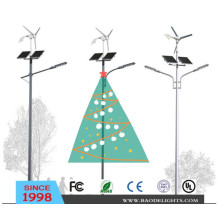 American Market Wind Solar Hybrid LED Street Light (BDTYN2-4)