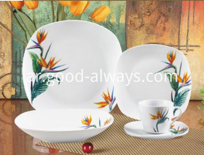 20 Piece Square Porcelain Dinner Setwer