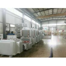 Transformador eléctrico de distribución de energía de tipo aceite para entornos hostiles
