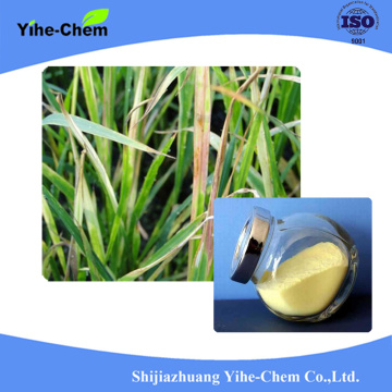 Agrochemical Fungicide Thiophanate-methyl 97% TC 70% WP 50SC