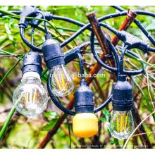 Lumières commerciales extérieures de chaîne de l'édition SL-1082 avec les ampoules nostalgiques d'Edison