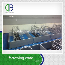 Hot Galvanized Pipe Pig Cage Farrowing Management Swine