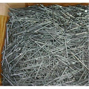 Galvanized Wire Concrete Nail / Fastener Hardware