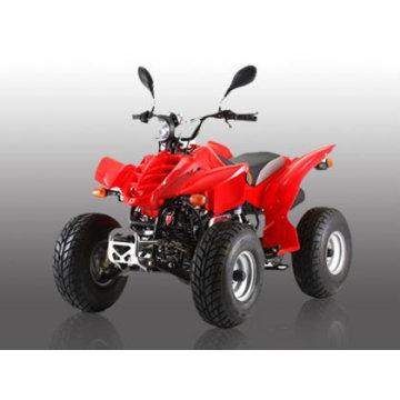 110CC ATV-1