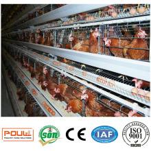 Handelsschicht-Hennen-Hühnerkäfig-Geflügel-Bauernhof-Ausrüstung
