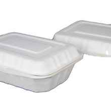 eco-friendly 8inch ToGo Food packaging made from sugar cane bagasse