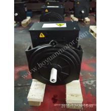AC Brushless Synchrongenerator 164D 12kw