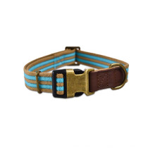 Adjustable Affordable Durable Made In China Charms Luxury Waterproof Dog Collar