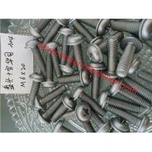 Pan Washer Screw Ruspert Screw Machine Screw