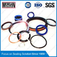 Fabricante profissional para todos os tipos de anel de vedação de borracha