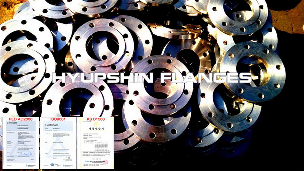 Hyupshin Flanges Slip On Plate Rf