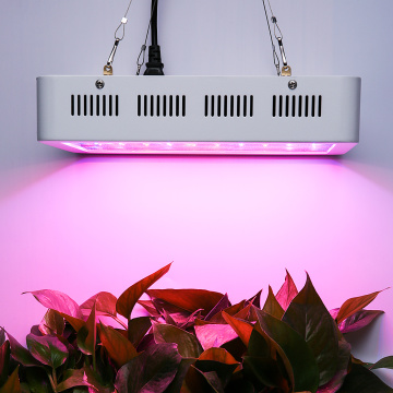 LED Full Spectrum Grow Light para interior
