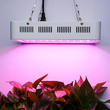 Full Spectrum LED Grow Light para interiores