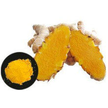 China High Quality Turmeric Curcumin for Exporting