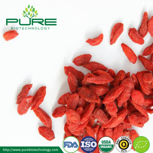 Orgánica Bio Goji Berry Fruit Dried fructus lycii
