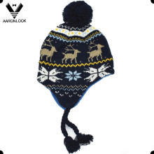 Invierno Moda Jacquard Niños Earflap Hat