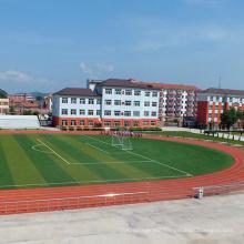Best selling artificial grass for futsal ED-4