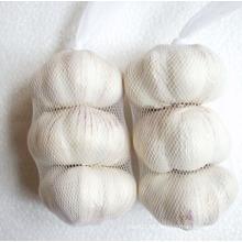 Alho branco puro da colheita nova (5.0cm e acima)