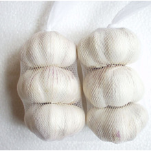 Nova Colheita Chiese Boa Qualidade Alho Branco Normal