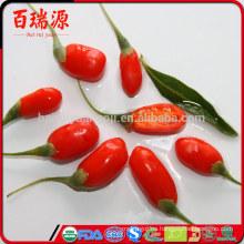 Primer lote de bayas de goji orgánicas, fruta goji, que son bayas de goji sin azufre