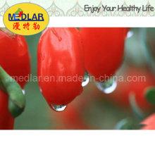 Organisches Mispel-Biokost-chinesisches Wolfberry - 220PCS / 50g