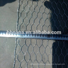BWG 14-21 galvanized hex netting mesh / Hex Wire Netting