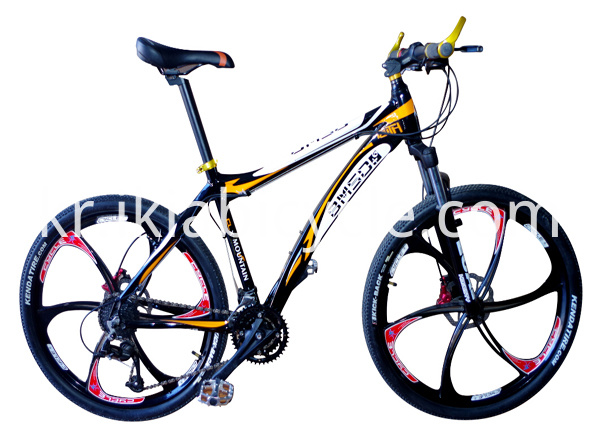 coloful MTB bike