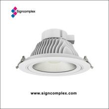 Ultra Bright COB Downlight 120lm/W 35W