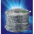 Caliente-cruce alambre de hierro galvanizado de púas