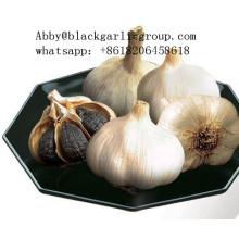Alto valor nutricional beneficioso Black Garlic