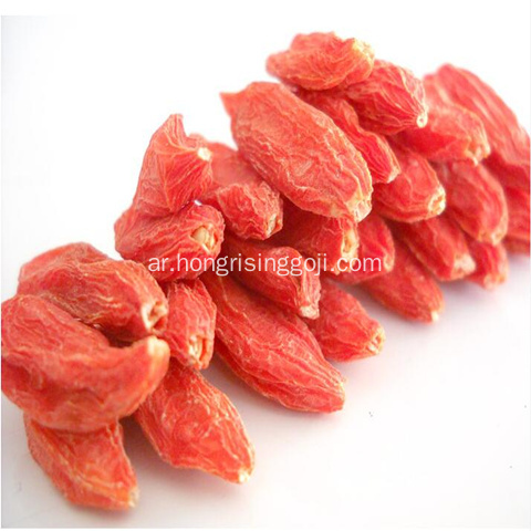 Lycium goji wolfberry new crop 2018