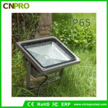 IP65 50W RGB LED Flood Light avec 16 couleurs