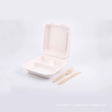 Hot sale nontoxic cane syrup biodegradable lunch box