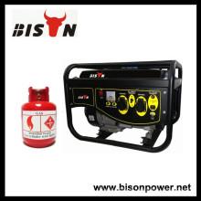 BISON (CHINA) BS6500NGFS 4-Stroke GPL Gerador de Gás