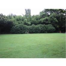 Tapis en caoutchouc creux de protection d'herbe extérieure de protection UV