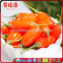 Health food goji berry producer