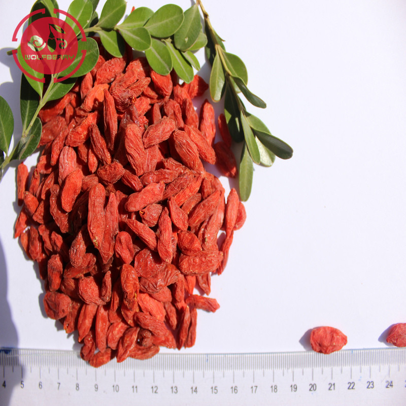 Grau superior certificado baixo pesticida Goji Berries