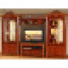 Cabinet de salon pour les meubles de salon (309)