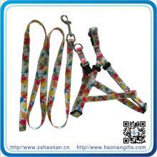 Custom Colorful Logo Dog Leash for Outdoor Dog