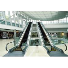 1000mm Vvvf Indoor Light Escalator for Supermarket