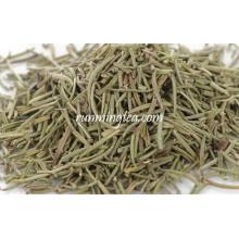 Mi Die Xiang (rosemary) chá de ervas