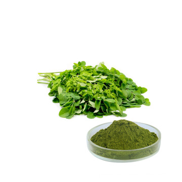 Hot sale pure natural moringa oleifera leaf extract powder