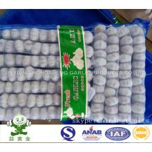 Taille normale de l'ail blanc 5.0cm 1lbs Petit emballage