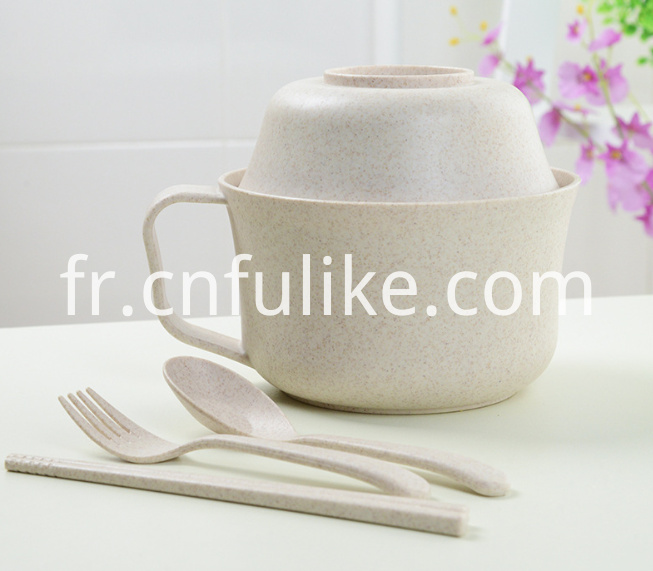 5 Pcs Dinnerware Set