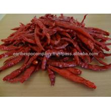 S17 chilli stemless